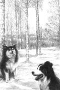 Robbie&Winterdog-397KB