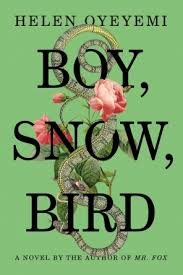 BoySnowBirdCover