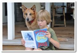 Kite and boy reading