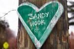 Sandyhook2
