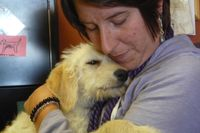 Assistance DogsWestSF-