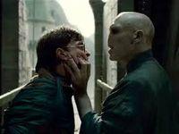 VoldemortHarry
