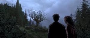 HarryHermioneHogwartsOminous
