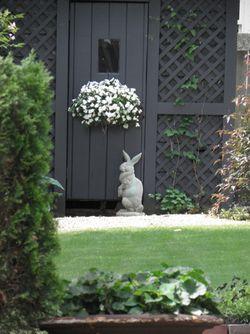 RabbitGardenFlowersMarblehead
