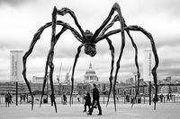 SpiderMamanLoiseBourgeois