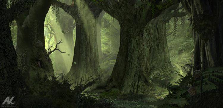 Ancient_forest_by_Adam Kuczak Deviant Art