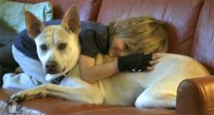 Leo service Dog andHenry Anyurisms