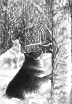 CITM-Dogs in a snowy forest-blog size