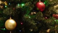 Christmas treeDetailShutterstock