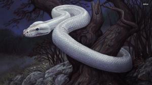 White Snake story revtold by Sara